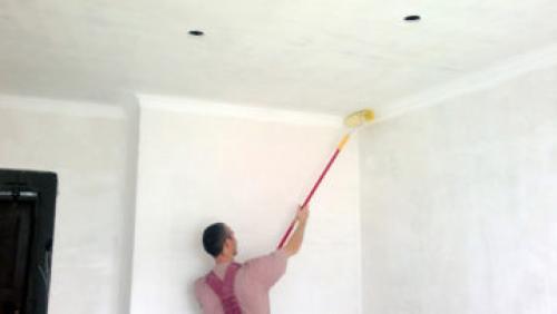 Чем покрасить потолок в ванной, чтобы не было грибка. Покраска потолка в ванной своими руками