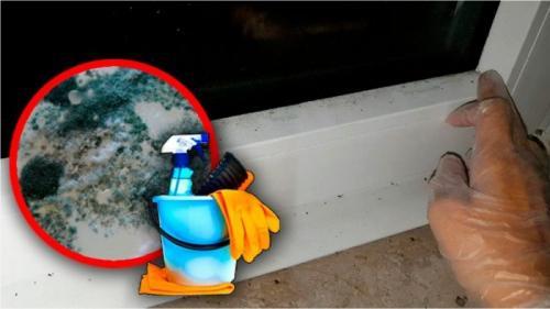 Как самим сделать ремонт деревянных окон если в них щели. Ремонт и отделка: как заделать щели в окнах, если холодно, гуляют сквозняки?