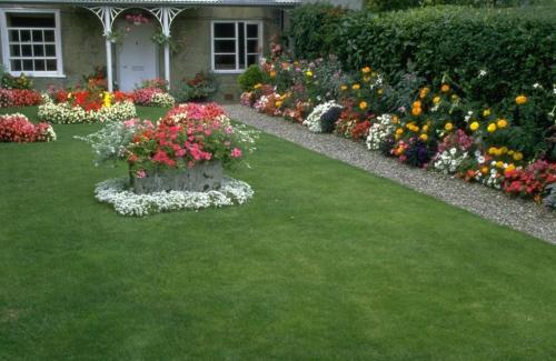 Красивые газоны возле дома. Варианты оформления газонов на дачном участке